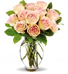Roses: Delicate Dozen Pink Roses