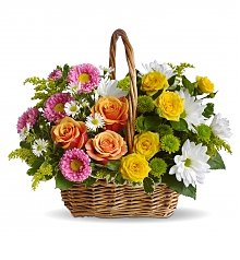 Flower Bouquets: Sweet Tranquility Basket